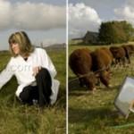 Recherches de l'INRA sur les émission de gaz à effet de serre par l'agriculture
