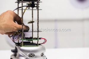 Des robots pour comprendre les insectes