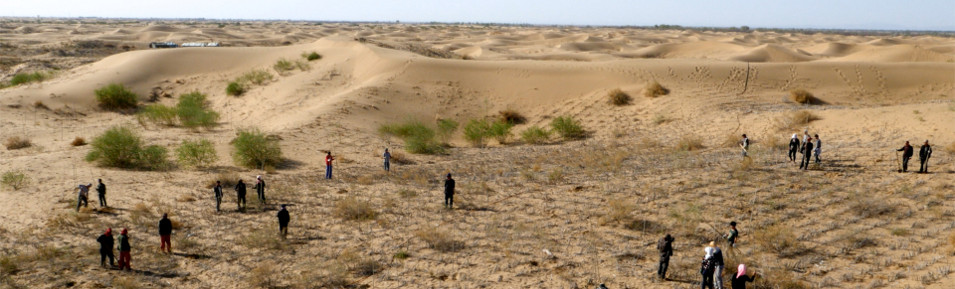 chine desert slider