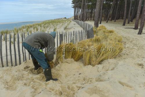L'Observatoire de la C¿¥te Aquitaine organise une visite terrain ¿Ý la presse sur la plage du Petit Nice ¿Ý La Teste-de-Buch (33) afin de montrer les outils de surveillance mis en ¿ìuvre pour le suivi du trait de c¿¥te le 1er Mars 2017.